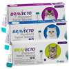 Up to 3 months of flea protection for cats - Bravecto for Cats