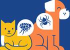 Best Flea Prevention for your Pet